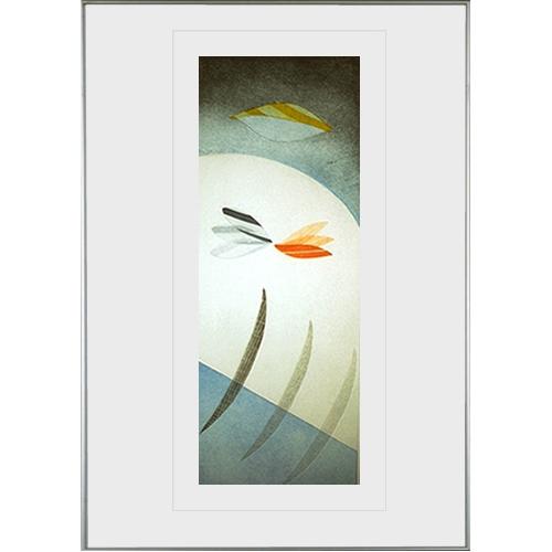 Kleurenets: Take off, 56 x 78 cm